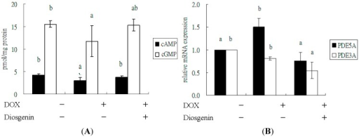 Effect of diosgenin on levels of cAMP and cGMP (A), and mRNA expressions of PDE5A and PDE3A (B) in heart tissues of mice treated with DOX for four weeks. Values are mean ± SD, n = 10. a,b Means in a row without a common letter differ, p < 0.05.