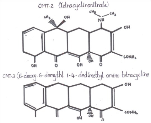 Structure of CMT-2 and CMT-3