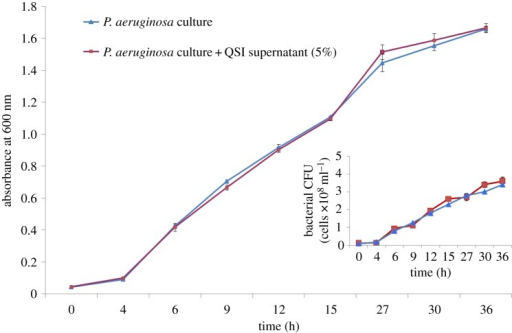 Effect of QSI on P. aeruginosa growth. Bacteria were grown in LB media with (red line) and without (blue line) QSI supernatant (5%). The flow cytometry results show the count of the bacterial cells (inset picture).