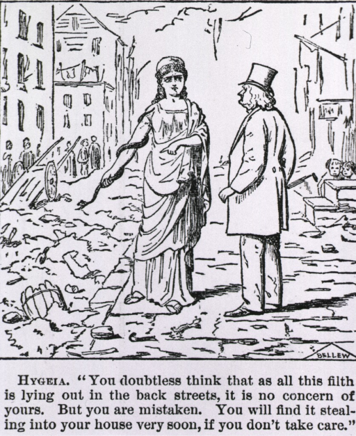 <p>Hygeia...[cartoon on filthy streets of NYC].</p>