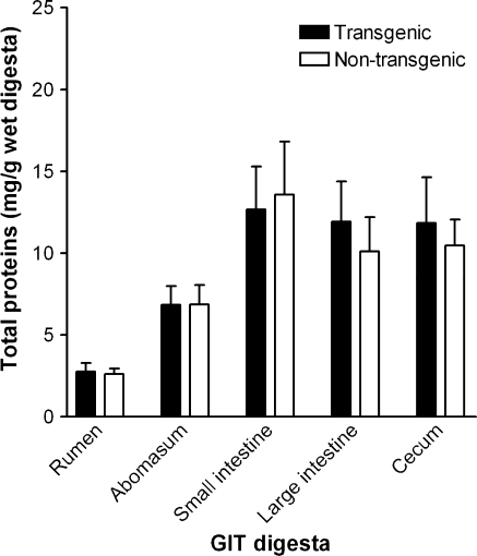 Relative total protein concentrations in different GIT digesta for cows fed a partial total mixed ration containing either transgenic or non-transgenic maize