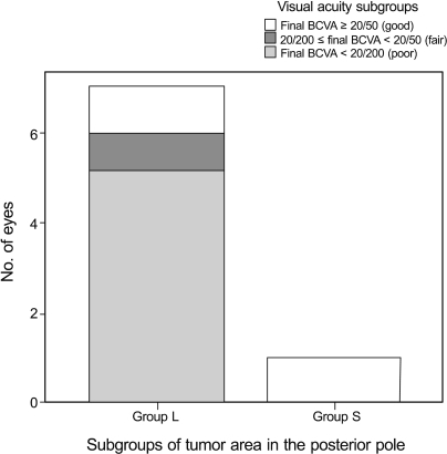 Distribution of final best corrected visual acuity (BCVA) according to tumor size. Group L (large) represents tumors greater than half of the size of posterior pole; group S (small) represents tumors less than half of the size of posterior pole. Note that only eyes with foveal involvement were included to avoid the influence of foveal involvement.