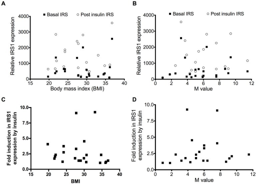 Relationship of IRS1 expression with body mass index or M value.Relative IRS1 protein expression according to body mass index (A) or to M value (B) and fold increase in IRS1 expression according to body mass index (r = −0.36; p = 0.10) (C) or to M value (r = 0.27; p = 0.23) (D).