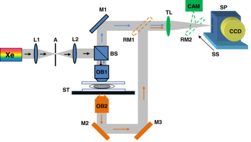 The schematic of SL-QPM setup. Xe: Xenon lamp; L: lens; OB: objective; M: mirror; RM: removable mirror; TL: tube lens; SP: spectrograph; SS: scanning stage.