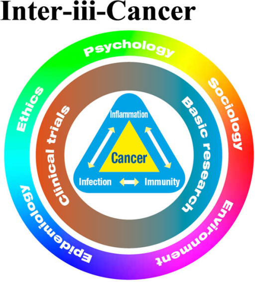 The Center for Interdisciplinary Research on Infection-Immunity-Inflammation Driven Cancer Diseases