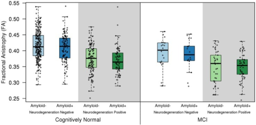 Fractional anisotropy of the fornix in the cognitively normal (CN) and mild cognitive impairment (MCI) biomarker groups. Hippocampal atrophy on MRI and/or hypometabolism in the Alzheimer signature composite on FDG PET was used to classify subjects into the neurodegeneration-positive group, and high amyloid load on PET was used to classify subjects into the amyloid-positive group. Cut-points for amyloid positivity, hippocampal atrophy, and Alzheimer signature hypometabolism were determined from the 10th percentile of the measurement distributions in clinically diagnosed AD patients as previously described (Jack et al., 2012). Fornix FA was lower in the neurodegeneration positive CN and MCI patients compared to the cognitively normal group with normal imaging findings (amyloid and neurodegeneration negative; p < 0.001). A positive amyloid PET scan was not associated with a reduction in fornix FA, in the absence of co-existent neurodegeneration in cognitively normal individuals (p = 0.19) (Kantarci et al., 2014).