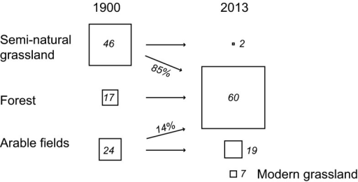 Major landscape transitions between 1900 and 2013 in a 1652 km2 transect in southeastern Sweden. Boxes are proportional to the change where the italic number gives the percentage of total land cover in the study area. Arrows show the dominant transitions to another land cover. Modern grassland derives from different historical land-cover categories but were primarily semi-natural grassland that have been used as arable fields between 1900 and today, or semi-natural grasslands that have been improved with fertilizers. Open water and dwellings are not included in the figure