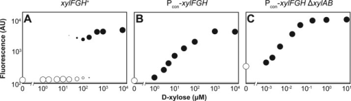 Linearizing the response to d-xylose. The wild type E. coli strain (A), the strain constitutively expressingthe high-affinity transporter xylFGH (B), and thestrain constitutively expressing the high-affinity transporter xylFGH and lacking the catabolic operon xylAB (C) each harbored the reporter plasmid pUA66-pxylA. The designatedstrain was back-diluted into M9 minimal medium supplemented with theindicated concentration of d-xylose and grown for 6 h toABS600 ∼ 0.4 prior to flow cytometry analysis. SeeFigure 3 for more information on the dot plots.Each dot plot is representative of at least three experiments conductedfrom independent colonies.