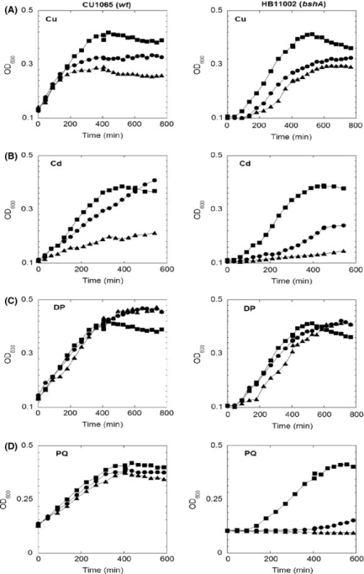 Growth curves of wild-type Bacillus subtilis (left panel) and ΔbshA strain (right panel) in MM with 0.05% casamino acid in presence of various stress challenges. (A) Cultures contained 0 μmol/L (square), 100 μmol/L (circle), and 300 μmol/L (triangle) of CuCl; (B) Cultures contained 0 μmol/L (square), 20 μmol/L (circle), and 50 μmol/L (triangle) of CdCl2. (C) Cultures contained 0 μmol/L (square), 100 μmol/L (circle), and 200 μmol/L (triangle) of 2,2′-dypridyl. (D) Cultures contained 0 μmol/L (square), 100 μmol/L (circle), and 250 μmol/L (triangle) of paraquat. The curves shown are representatives of at least three independent experiments.