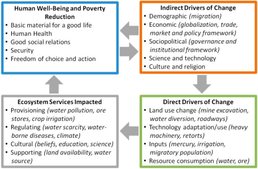 Framework linking key drivers and impacted natural systems. Principal domains of inquiry are highlighted. Framework is adapted from the Millennium Ecosystem Assessment [7].