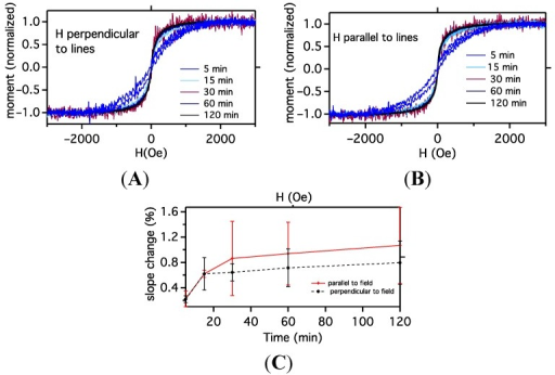 Magnetic moment as a function of external magnetic field for assembled nanoparticle patterns for different coating times measured: (A) with lines parallel to the applied field; and (B) with lines perpendicular to the magnetic field. Note the increase in slope as time increases. Since the slope change occurs for both orientations of magnetic field, it is likely not due to the increasing pattern width but due to clustering effects within the patterns, i.e., not pattern–pattern interaction; Panel (C) shows the average slope of the m-H curve obtained at 20 and 100 Oe as a function of coating time, and while at long times, the perpendicular field loops have a lower slope than the parallel loops, the error bars overlap and thus beyond the slope change due to increasing feature size that is isotropic with direction, no difference between parallel and perpendicular fields can be claimed from the data.