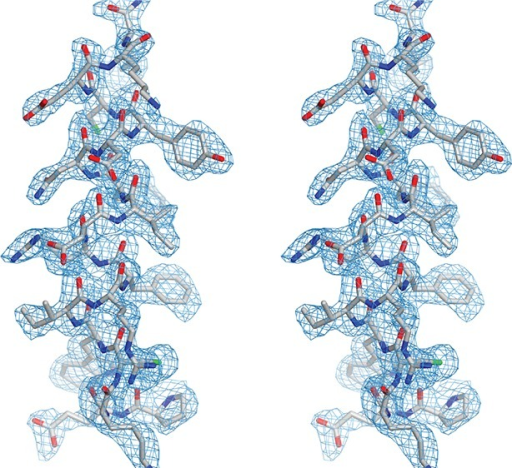 Analysis of the structural model of Drosophila Pur-alpha repeat III.Stereo view of the helical region of chain B (grey), from lysine 254 to proline 235 with (2Fo-Fc) electron-density map (blue).DOI:http://dx.doi.org/10.7554/eLife.11297.017