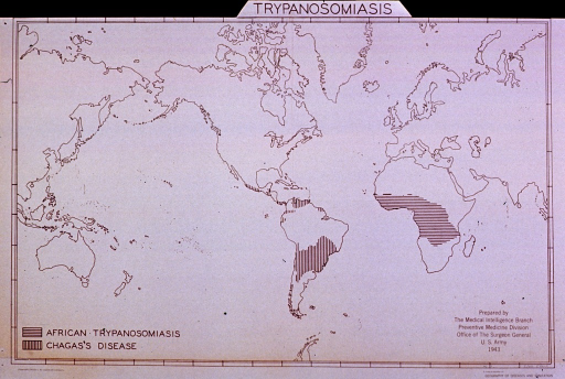 <p>Map showing the distribution of two forms of trypanosomiasis in the world.</p>