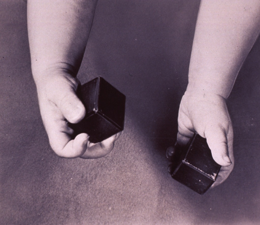 <p>Hands holding wooden blocks.</p>