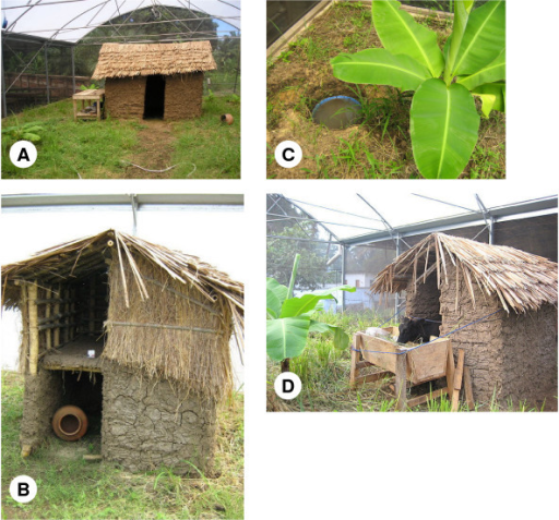 Habitat features within the SFS section designated for a free-living An. arabiensis population: (a) traditional mud-walled house, (b) chicken coop with clay pot refugia, (c) artificial breeding site and banana plant, (d) Cattle shed containing calf host.