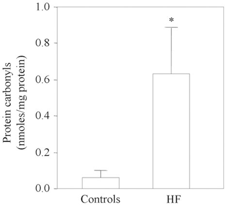ELISA-measured protein carbonyl levels in the myocardium of 14 HF patients and 13 controls.*p<0.01 vs controls.