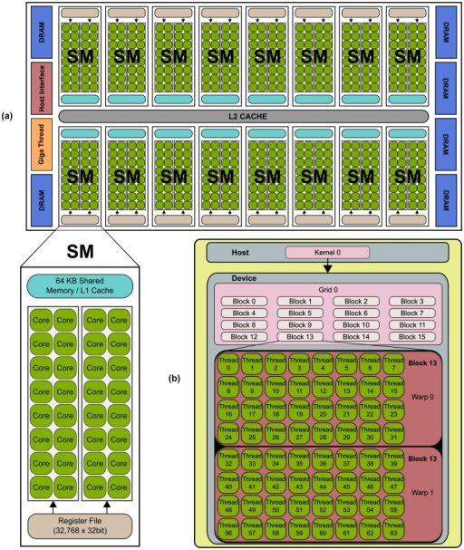 Typical NVIDIA GPU architecture.The GPU is comprised of a set of Streaming MultiProcessors (SM). Each SM is comprised of several Stream Processor (SP) cores, as shown for the NVIDIA's Fermi architecture (a). The GPU resources are controlled by the programmer through the CUDA programming model, shown in (b).