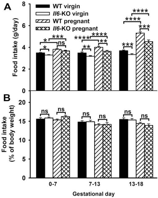 Average daily intake in Il6-KO mice throughout pregnancy.Food intake was measured daily in individually housed 12 weeks old virgin (n = 21) and pregnant WT and Il6-KO mice (n = 15–16). A–B. Average daily intake (A) was calculated for early (gestational days 0–7), mid (gestational days 7–13) and late pregnancy (gestational days 13–18). Food intake values normalized in percentage to animal body weight (B). Two-way ANOVA for repeated measurements, *P<0.05, **P<0.01, ***P <0.001 and ****P<0.0001, ns =  not significant.