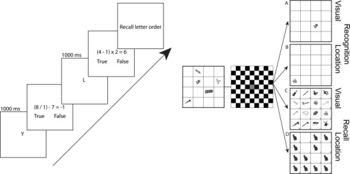 Left: OSpan WM paradigm.Participants remember consonants (1000 ms) then solve arithmetic problems before reporting the letter sequence. Right: Visuospatial WM paradigm. A) Visual recognition trials start with the presentation of the stimulus array (500 ms) followed by a delay period (750 ms) and the appearance of a probe item. Participants reported whether the probe item was 'old' or 'new'. B) Location recognition trials began with the stimulus array (200 ms) followed by a delay period (4000 ms). Participants reported whether the probe location was 'old' or 'new'. C) Visual recall trials begin with stimulus presentation (2000 ms) followed by a delay (500 ms). The probe array contained 15 new and 1 old item, which participants were asked to identify. D) Location recall trials begin with stimulus presentation (200 ms) followed by a delay period (4000 ms). At probe, an array of filled locations appeared and participants reported which filled location had been occupied at encoding.