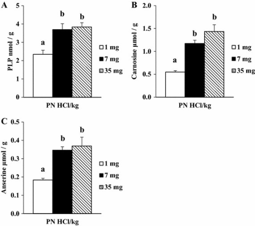 Effect of dietary levels of B6 (PN HCl) on concentrations of PLP (A), carnosine (B), and anserine (C) in the heart of rats. Mean ± SE (n = 5 for PLP; n = 4 for carnosine and anserine). For the analysis of carnosine and anserine, the supernatant samples of each two rats from the same group of eight rats were combined to obtain the pooled four samples. Values with different superscript are significantly different by Tukey's multiple-range test (P < 0.05).