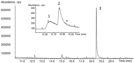 Total ion current chromatogram of the extract obtained from culture supernatant.The sample was taken from a regular culture after 10 days of incubation. The magnified sector indicates the 2,5-DMHQ (no. 1) and the 2,5-DMHQ monoacetate (no. 2) as well as the inferred 2,5-DMBQ (*). The signal no. 3 has the molecular mass 190 g/mol.