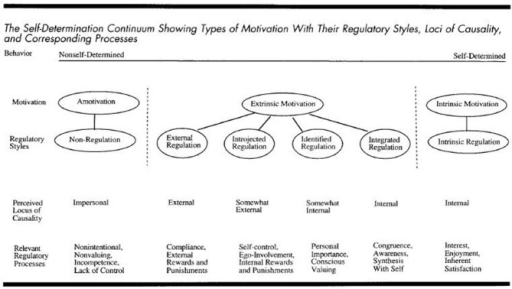 The self-determination continuum, Ryan and Deci (2000). Copyright © 2000 by the American Psychological Association. Reproduced with permission. The official citation that should be used in referencing this material is Ryan and Deci (2000). The use of APA information does not imply endorsement by APA.