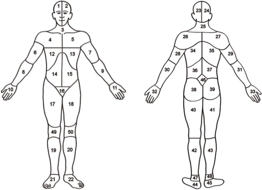 Body map.Head (area 1, 2, 23, or 24); neck (area 3 or 25), shoulders (area 4, 5, 26, 27); arms (area 6, 7, 8, 9, 28, 29, 30 or 31); hand (area 10, 11, 32, 33); ribs or chest (area 12 or 13); abdomen (area 14 or 15), back (area 34, 35, 36, 37), buttocks or hips (area 38 or 39); genitalia (area 16), legs (area 17, 18, 19, 20, 40, 41, 42 or 43); feet (area 21, 22, 44 or 45). Adapted from Margolis, Tait, & Krause (1986).