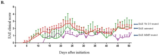 Comparison of the experimental autoimmune encephalomyelitis (EAE) clinical score among untreated mice (red line), mice treated with vitamin D3 (green line) or those fed MMF (pink line) for 50 days. The significant values were calculated using one way ANOVA followed by Sidak's multiple comparison test during the entire period of the experiments (A). Results were also evaluated by area under curve analysis (B). Data were collected from 10 mice in each group at any time point.
