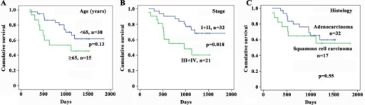 Kaplan–Meier estimates of survival of patients with non-small cell lung cancer (NSCLC) according to age, cancer stage, and histology.DOI:http://dx.doi.org/10.7554/eLife.09419.005
