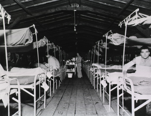 <p>Wounded patients sit or lie on beds, which are positioned in two rows along either side of a long room.</p>