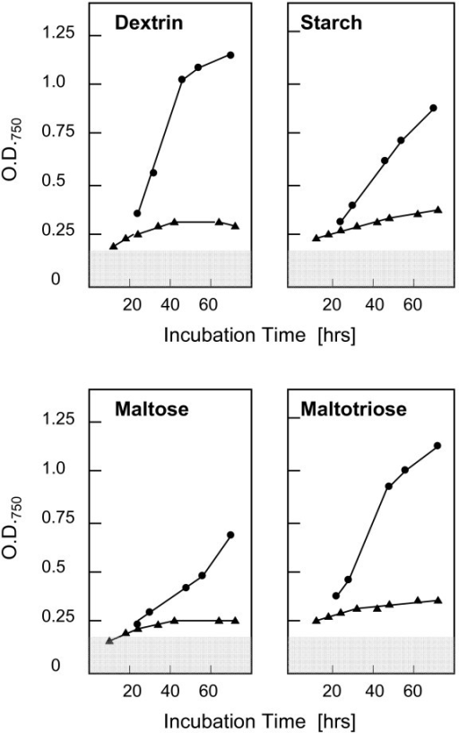 Growth rates of H. jecorina strain QM6a (full circles) and strain RUT C30 (full triangles) on maltose, maltotriose, dextrin and starch, using the Biolog phenotype arrays system. The grey area indicates the threshold of the water control. Data are shown are means of 3 separate experiments, which differed by less than ± 10 relative %.