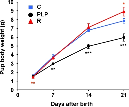 Growth curves of pups of control, postnatal low protein and recuperated mice during lactation.Body weights of pups were recorded at days 3, 7, 14 and 21 of age. To maximize the effects of maternal diet, recuperated pups (R) were culled to 4 and control pups (C) were culled to 8 (if litter size was greater than 8) whereas postnatal low protein pups (PLP) were unculled. Means±SEM are shown (* P<0.05, ** P<0.01, *** P<0.001 compared to control; n = C: 13, PLP: 11, R: 16).