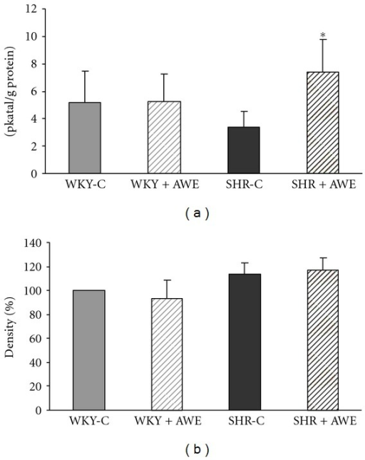 The effect of Alibernet red wine extract (AWE) treatment on total nitric oxid synthase (NOS) activity (a) and eNOS protein expression (b) in the left ventricle (LV) of Wistar Kyoto rats (WKY) and spontaneously hypertensive rats (SHR). P < 0.05 as compared to respective control. WKY-C: control group; WKY + AWE: animals treated with the Alibernet wine extract; SHR-C: control group; SHR + AWE: animals treated with the Alibernet wine extract.