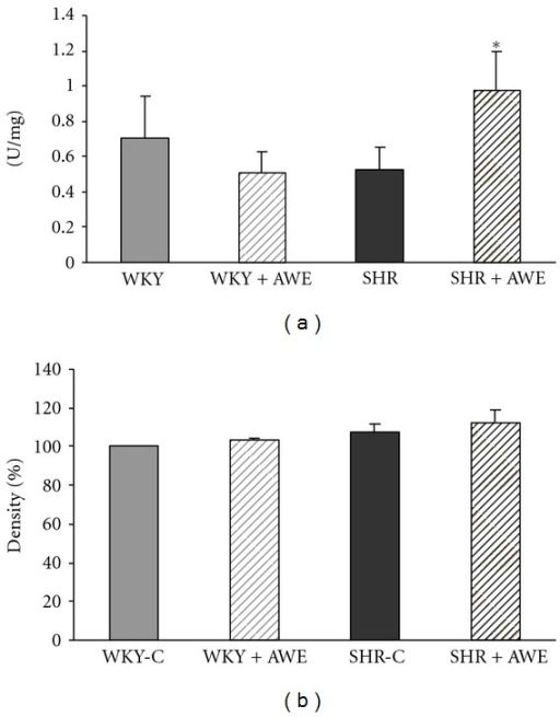 The effect of Alibernet wine extract (AWE) on superoxide dismutase (SOD) activity (a) and SOD1 protein expression (b) in the left ventricle (LV) of Wistar Kyoto rats (WKY) and spontaneously hypertensive rats (SHR). P < 0.05 as compared to untreated animals. WKY-C: control group; WKY + AWE: animals treated with the Alibernet wine extract; SHR-C: control group; SHR + AWE: animals treated with the Alibernet wine extract.
