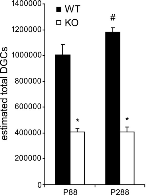 Adult cD2KO mice have reduced numbers of dentate granule cells (DGCs). Absolute numbers of DGCs were estimated in mice aged P88 or P288. At both ages, they were significantly reduced due to the lack of functional cD2 (*p < 0.001). In WT animals, the number of DGCs increased with advancing age (#p < 0.05). We found no evidence for such an age-related change in cD2KO mice.