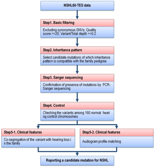 Analysis flow of NSHL-80 targeted resequencing on familial NSHL.Targeted resequencing data from 20 familial NSHL cases were filtered through five steps to select candidate SNVs in NSHL genes.