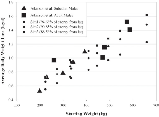 Comparing predicted mass-specific polar bear weight loss during a seasonal fast to field measurements.Weight-specific average weight losses for males predicted by Niche Mapper compared to weight-specific mass losses male bears in the western Hudson Bay population, reported in Atkinson et al. [59].