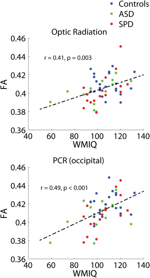 Combined-group associations between tract connectivity and WMI.The two bilateral tracts demonstrating significant associations between FA and WMI after FDR correction are displayed. Optic radiation: r = 0.41, p = 0.003. PCR (occipital): r = 0.49, p<0.001. Results of unilateral and individual group correlations are displayed in Table 7.
