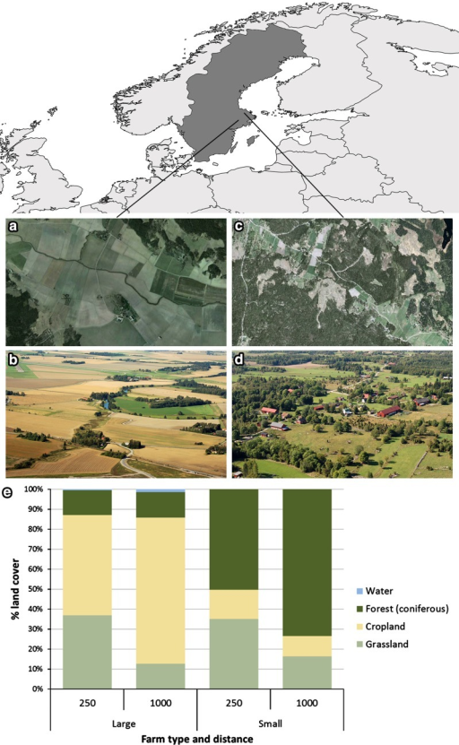 Study area and the two different farming systems. Pictures a, b show high-intensity farms and c, d low-intensity farms. e Shows the average land cover composition within 250 and 1000 m, respectively, from each farmhouse in the different farming systems