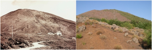 Genista aetnensis invasion of the Vesuvius Grand Cone.Changing landscape at the Vesuvius Grand Cone following Genista aetnensis invasion. Pictures have been taken from the West side of the Grand Cone in 1880 (Raccolte Museali Fratelli Alinari, Firenze, Italy) and in 2013 (Picture by Stinca A.).