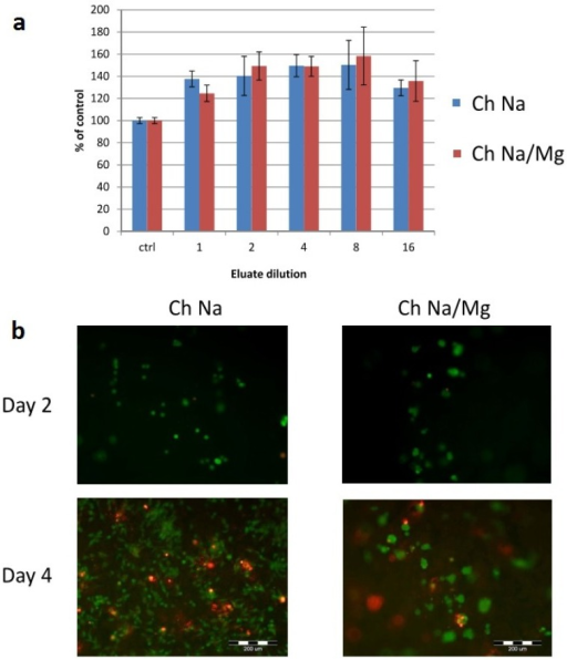 Cytocompatibility and adhesion of MG63 cells. (a) Mitochondrial activity of cells cultured in dilutions of eluates of chitosan/Na-β-GP (Ch Na) and chitosan/Na-β-GP/Mg-GP (Ch Na/Mg) hydrogels. Mean values (n = 3) error bars show standard deviation; (b) Live-Dead staining of cells cultured directly on hydrogels after 2 and 4 days.