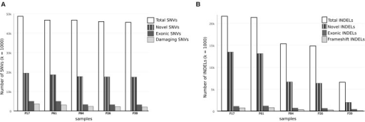 Comparison of single nucleotide variations and insertion–deletions in study samples. (A) Bar chart showing Total number of SNVs, number of damaging SNVs (assessed by ConDel scores) and novel SNVs (not found in 1000 genome) in study samples. (B) Bar chart showing total number of INDELs and number of novel variants with reference to dbSNP137. Number of exonic and frameshift INDELs is shown as well. The discrepancy between tumor and control samples is more prominent in INDELs.