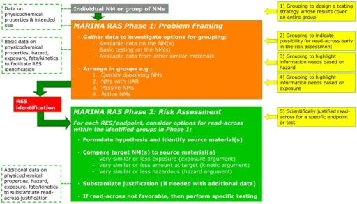 Possible applications of grouping and read-across of NMs (yellow boxes) in Phase 1 (orange box) and 2 (green box) of the MARINA Risk Assessment Strategy (RAS). These boxes are explained in more detail in the text in order of their numbering. The white boxes with green dotted outline represent input of data. HAR: High Aspect Ratio; RES: Relevant Exposure Scenario.