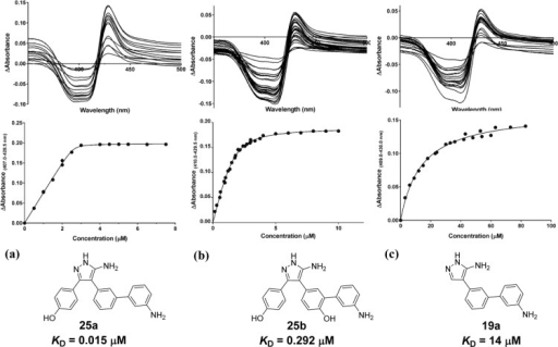 Optical titration difference spectra (top panel) and concentration-dependentchanges in CYP121 absorbance (bottom panel) for representative hemebinding ligands (a) 24a, (b) 25b, and (c) 19a. Absorption spectra of CYP121 (5 μM) were collectedbetween 250 and 800 nm after sequential additions of 0.2 μLaliquots of DMSO-d6 stock solutions (0.15–83mM) of ligands. Difference spectra were obtained from the subtractionof the ligand-free CYP121 spectra from those obtained over the courseof the titration. The maximum change in absorbance from each differencespectrum was plotted against ligand concentration and data were fittedusing a modified version of the Morrison equation for tight bindingligands 24a and 25b(17) or a hyperbolic function for 19a.