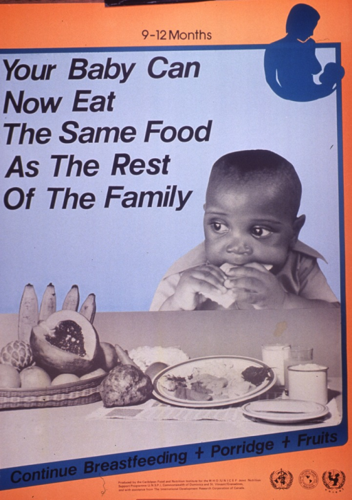 <p>Predominantly orange and blue poster with black lettering.  Title at top of poster along with a silhouette of a mother preparing to breastfeed her baby.  Dominant visual image is a b&amp;w photo reproduction featuring a baby eating a cracker.  An array of fruits and other food sits on a table in front of it.  Caption below photo.  Publisher and sponsor information at bottom of poster.</p>