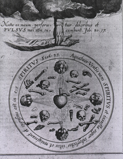 <p>The hand of god taking the pulse of an arm; in a circle cluttered with skulls and bones, the four winds blow on a centrally located heart. Around the circle is a quotation from Ezekiel 37.</p>