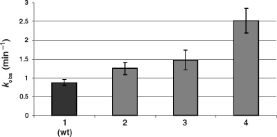 Histogram of the determined rate constant (kobs) for the wild-type ribozyme (1), the RzG81A (2), the RzG81C (3) and the RzG41U and (4) mutants.