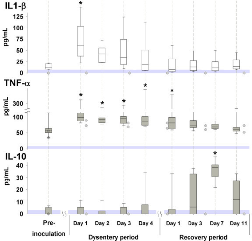 Serum concentrations of cytokines during experimentally induced swine dysentery. Serum concentrations of IL-1β, TNF-α and IL-10 before inoculation, during clinical signs of dysentery, and during the recovery period are shown by the box plot. The shaded circles illustrates the individual values of the two animals that remained clinically healthy sampled before inoculation and at days 4, 14, 21, 28 and 35 post-inoculation. The shaded areas above zero represent the detection limit of the assays. * significantly different from the pre-inoculation value.