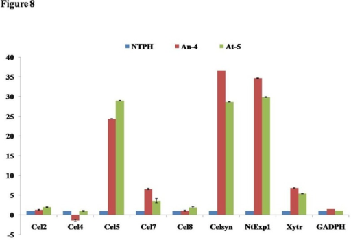 Transcript level of important cell wall enzyme in transgenic plant.Transcript level of all analysed genes [endo-1,4-ß-glucanases (Cel2, Cel4, Cel5, Cel7, Cel8), Cellulose synthase (celsyn), endo-xyloglucan transferase (Xytr), Expansin (NtExp1) and Glyceraldehyde-3-phosphate dehydrogenase (GAPDH)] was up regulated in AtPME transgenic lines (At-5) over WT (NTPH) while AnPME transgenic plants (An-4) also showed expression pattern similar to AtPME except Cel4. Transcript level of housekeeping genes like GADPH was almost unaltered in transgenic plants.