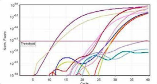 Quantitative data for HPV DNA virus levels. Real-time amplification with fluorescence detection. The plasmid controls for two species, water blank, and negative human control DNA are indicated. The remaining curves are patient specimens with HPV DNA virus levels.